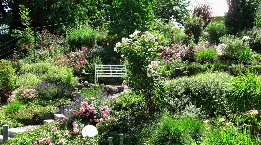 Private Gärten | Kordes und Kipper